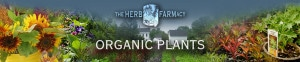Herb_Farmacy